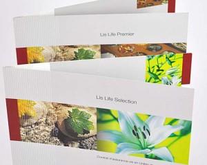 chemise – Crédit Agricole Luxembourg – Lis Life