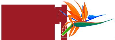 Rsansfin_logo