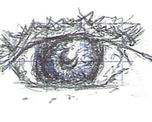 croquis – oeil
